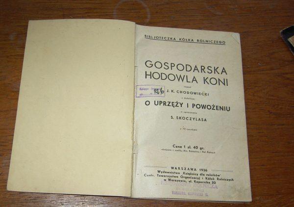 GOSPODARSKA  HADOVNA KONI 1936